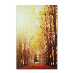 Philippe Sainte-Laudy 'Fountains of Light' Canvas Art | Overstock.com Shopping - Top Rated Trademark Fine Art Canvas