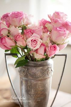 Shabby Chic Pink Paint Styles and Decors to Apply in Your Home – Shabby Chic Home Interiors Beautiful Roses, Fresh Flowers, Pretty In Pink, Beautiful Flowers, Shabby Chic Style, Shabby Chic Decor, Pink Roses, Pink Flowers, Tea Roses