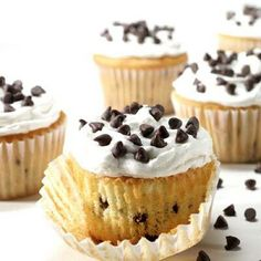 Dalmatian chocolate cupcakes :-) add mini chops to yellow or white cake batter, decorate frosted cupcakes with more mini chips.