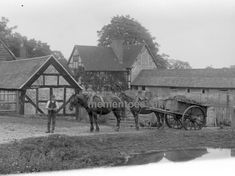 Horse Cart, Royal Mail, Vintage Photographs, Farmer, The Row, Horses, Antiques, House Styles, Glass