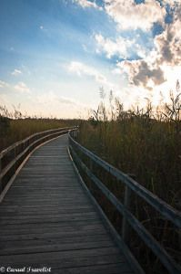 A #sunset stroll at Back Bay National Wildlife Refuge in #Virginia Beach www.casualtravelist.com