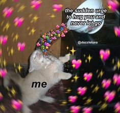 Kawaii Quotes, Wholesome Pictures, Cute Romance, Cute Love Memes, Snapchat Stickers, Crush Memes, Cute Messages, Lovey Dovey, Wholesome Memes