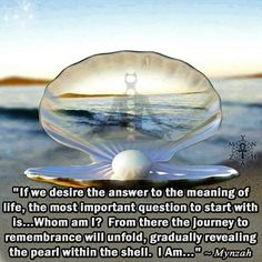"""If we desire the answer to the meaning of life, the most important question to start with is…Whom am I? From there the journey to remembrance will unfold, gradually revealing the pearl within the shell. I Am…"" ~ Mynzah"