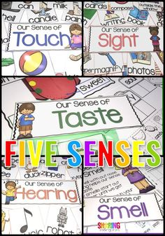 Five senses Learning Activities for Preschool and Kindergarten