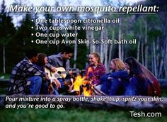 """Homemade mosquito repellant... not sure what the """"skin-so-soft"""" does in the recipe..."""