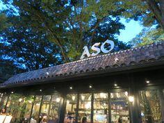 樹齢300年のケヤキを控える、ASOのロゴが立派な外観。