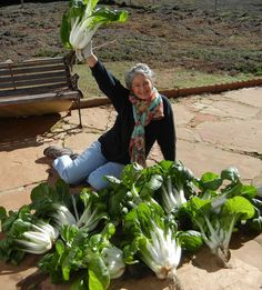 Phyllis Davis, Co-Inventor, Portable Farms Aquaponics Systems showing a harvest organic bok choy grown in a Portable Farm in 40 days with no chemicals or insecticides. The average weight of EACH of these bok choy is 8.5 pounds.