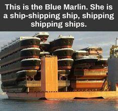 Shipception