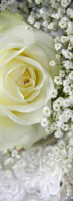 Wedding Events, Wedding Day, Weddings, Flower Boutique, Wedding Inspiration, Beautiful, Fun, Flowers, Pi Day Wedding