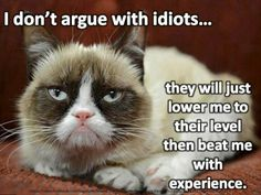 I don't argue with an idiots…