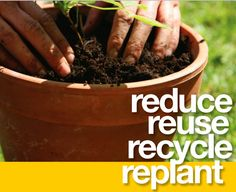 Reduce ~ Reuse~Recycle~Replant