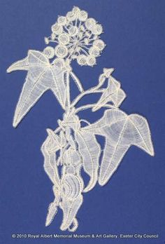 Honiton (East Devon) lace sprig - This lace sprig was produced by an East Devon lace manufacturer. Ivy leaves and a flower head are represented in bobbin lace, made on the pillow using typical East Devon techniques to produce a naturalistic design. Two large leaves are made with raised work and whole and half stitch. One area also uses three twisted veins to add to the three dimensional effect. The flower head has occasional purls on the edge of the berries. The Royal Collection, Ivy Leaf, Lacemaking, Bobbin Lace, Lace Weddings, Royal Albert, Three Dimensional, Devon, Floral Lace