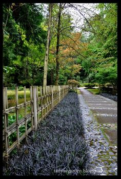 Designer -Fujitaro Kubota Dry Garden designed by Koichi Kawana . Seattle Japanese Garden, Japanese Garden Style, Japanese Tea House, Japanese Beauty, Japanese Gardens, Dry Garden, Home And Garden, Farmhouse Garden, Bainbridge Island