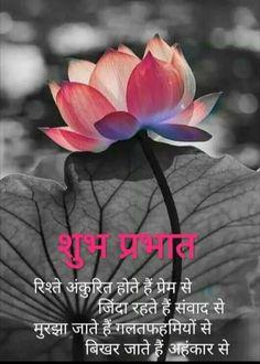 Good Morning Images, Good Morning Quotes, Gif Photo, Buddha Meditation, Gujarati Quotes, Osho, Hindi Quotes, Good Night, Movie Posters