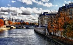 Ile de la Cite Wallpaper Autumn