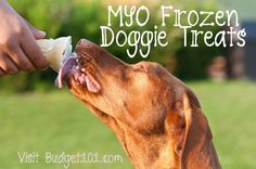 It's already getting hot, particularly for our furbabies who have the extra (natural) sweater on. Here's a DIY Frozen Doggie Treat Recipe Fido is sure to adore....