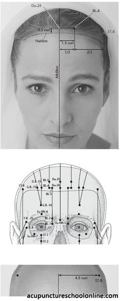 (BL-4) Crooked Curve QUCHA - Acupuncture Points -1