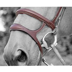 THIS PRODUCT IS BEING SOLD AS EX DISPLAY AND MAY SHOW SOME SIGNS OF BEING HANDLED. Padded noseband in English leather, combines 1 cavesson noseband and 1 drop n