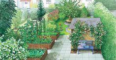 Ein sehr langer und schmaler Garten soll Struktur erhalten und kindgerecht werden. Wir haben zwei Vorschläge, inklusive Pflanzplänen und Einkaufsliste.