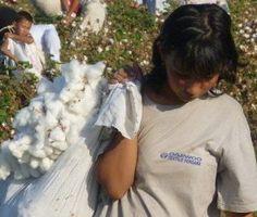 End Slavery on Cotton Plantations - ForceChange
