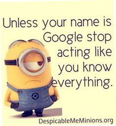 Top 25 Minion Quotes