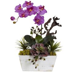 Nearly Natural Orchid & Succulent Garden with White Wash Planter (Orchid) (Orchid), Purple
