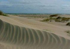 Rømø, die Ferieninsel im Wattenmeer, liegt gleich neben Sylt. Rømø, das heisst Sonne, Wasser, Wind, Wald und Heide, aber vor allem heisst Rømø: Sandstrand so weit das Auge reicht. Rømø hat...