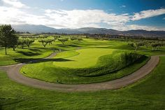 The Harvest Golf Club, BC. Think this could be the venue ! National Championship, Play Golf, Wine Tasting, Pitch, Fun Activities, Golf Clubs, Golf Courses, Canada, Tours