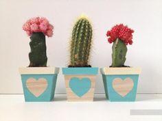 Оригинальные горшочки для кактусов - украшение интерьера