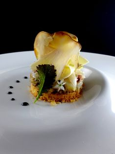 On a shortbread with hazelnut, bar tartare with young shoots of Japanese mustard, and mushroom carpaccio - Appetizer Plates, Yummy Appetizers, Appetizer Recipes, Chefs, Entree Recipes, Gourmet Recipes, Gourmet Food Plating, Michelin Star Food, Bistro Food