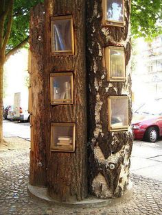 Building covered bookshelves into trees is a creative indoor or outdoor DIY idea!