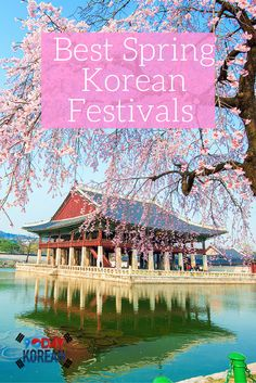 The Best Spring Korean Festivals in 2016. Plan for them now so you can have a fun spring in Korea!  Repin if this was useful ^^