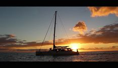 Catamaran Trip in Gran Canaria: read more about the best catamaran trip in Gran Canaria that includes dolphin watching, snorkeling, and more! Canario, Catamaran, Snorkeling, Boat, Diving, Dinghy, Boats, Catamaran Yachts, Ship