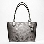 Been very bored with Coach lately, but I do like this tote. Simple but cute!