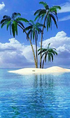 Puerto Vallarta Mexico Pacific Ocean Palm Trees Beach 8x10 Fine Art Print Photo
