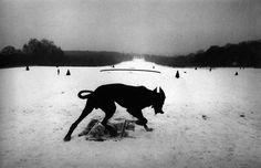 © Josef Koudelka, Hauts-de-Seine, Parc de Sceaux, France 1987