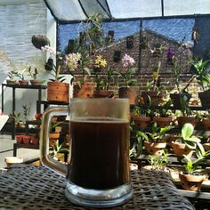Real West Java Coffee