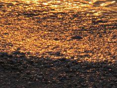 Water to Gold!   Photo by Liz Baska
