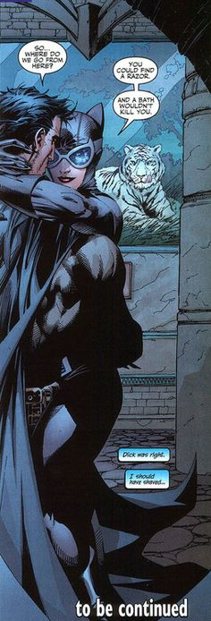 Batman: Hush – Is this a hug or a full body clinch? Bruce Wayne and Selina Kyle (Catwoman)