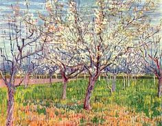 """""""Albicocchi in fiore"""", Vincent van Gogh, 1888. Olio su tela, Van Gogh Museum di Amsterdam"""