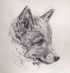 Pencil art drawings fox cub mechanical pencil drawing by akdizzle tatuaje d Pencil Art Drawings, Easy Drawings, Animal Drawings, Drawing Sketches, Drawing Animals, Realistic Drawings, Fox Drawing, Drawing Eyes, Girl Faces
