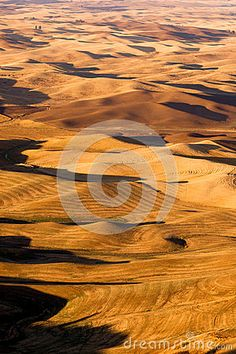 Photo about Rolling hills from a good vantage point overlooking rich Palouse Country farmland. Image of agricultural, environment, grass - 45404451 Art Model, Video Footage, Washington State, Agriculture, Stock Photos, Writing, Country, Medium, Perspective