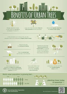 DYK that spending time near trees improves physical and mental health? Learn about the many benefits of urban trees in this #infographic.