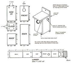 f14ad01fd2c972f95ce19f9742719a01 nebraska game american kestrel squirrel house plans how to build a tree house for squirrels,Red Squirrel House Plans