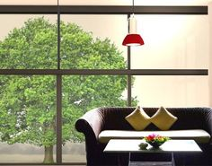 Window Sticker summer linden window film window tattoo glass sticker window art window décor window decoration window picture Dimensions: 50.4 x 58.3 inches *** Learn more by visiting the image link. (This is an affiliate link and I receive a commission for the sales)