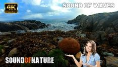 Sound of ocean waves crashing against the shore on a windy and cloudy autumn day. Relaxing sound to calm down your mind. The relaxing and calming sound of t. Ocean Sounds, Nature Sounds, Cloudy Day, Ocean Waves, Calming, Relax, Social Media, Landscape, Outdoor