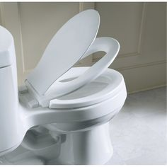 Kohler Transititions toilet seat; has a second seat built on for kids so you don't need to run around to find which bathroom has the toddler ring. I shall be getting this for goobie!
