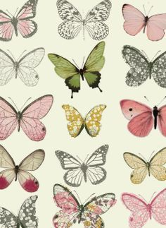All about surface pattern ,textiles and graphics Surface Patterns Design, Butterflies Patterns, Butterflies Images, Butterflies Graphics, Surface Patterns Textiles, Textiles Patterns, Butterflies Prints, Surface Design, Colour Schemes