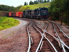 Railroad Sao Paulo Country side Brasil - by Luis Sorrilha