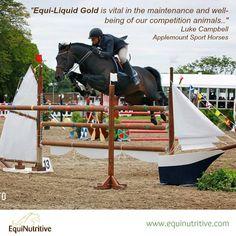 Feedback from Luke Campbell, International Irish Showjumper on our Equi-Liquid GOLD :)